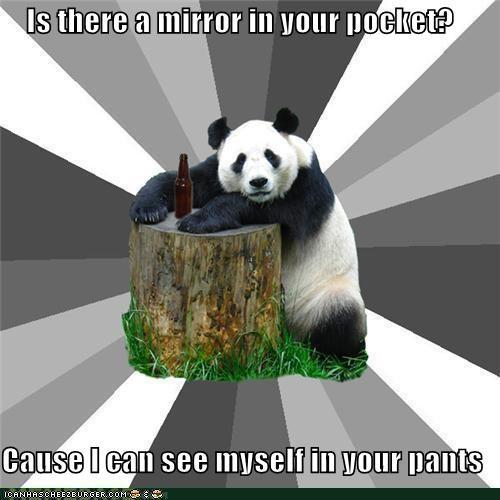 animemes,Memes,mirror,panda,pants,pick-up line,reflect