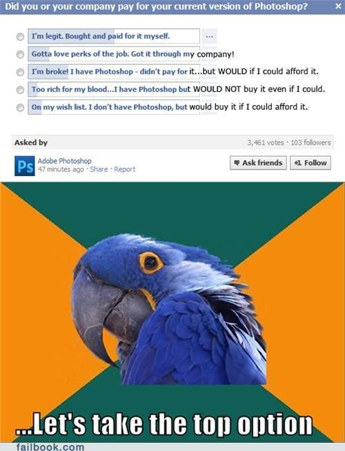 adobe,legit,nice try,options,Paranoid Parrot,photoshop