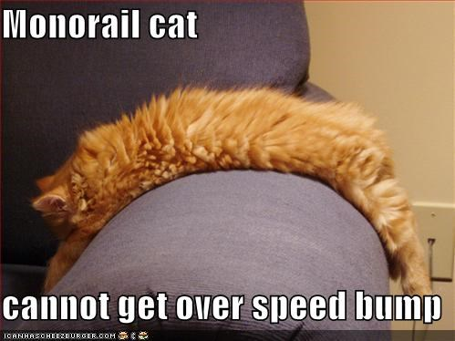 Monorail cat  cannot get over speed bump