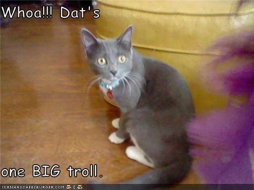 Whoa!!! Dat's  one BIG troll.