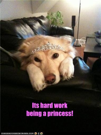 Its hard work being a princess!