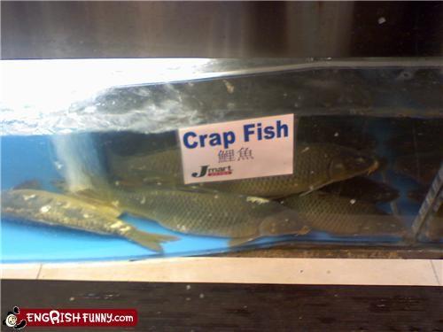 carp,crap,engrish,fish,sign