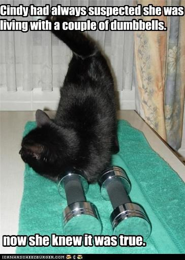 Cindy had always suspected she was living with a couple of dumbbells.