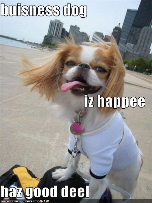 buisness dog iz happee haz good deel
