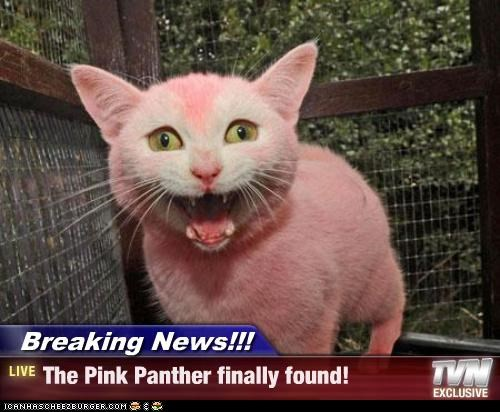 Breaking News!!! - The Pink Panther finally found!