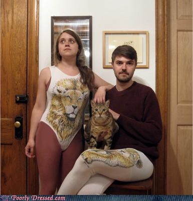 Cats,cats and more cats,spandex