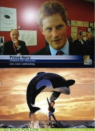 Prince Harry, the Prince of Whales