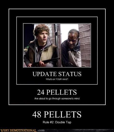 48 PELLETS