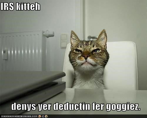 IRS kitteh  denys yer deductin fer goggiez.