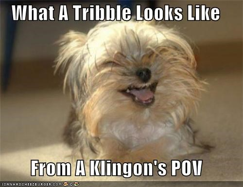 What A Tribble Looks Like  From A Klingon's POV