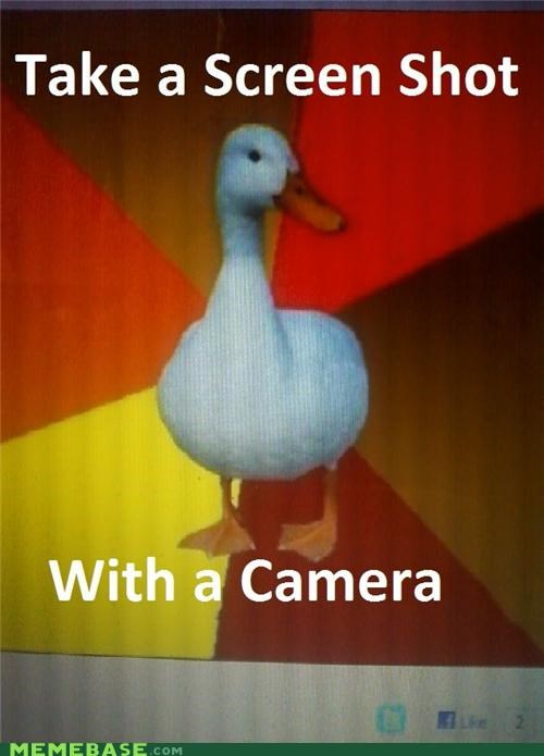 Technologically Impaired Duck: Then Scan the Camera Display