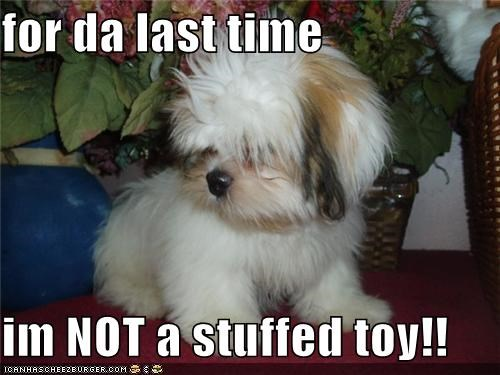 for da last time  im NOT a stuffed toy!!