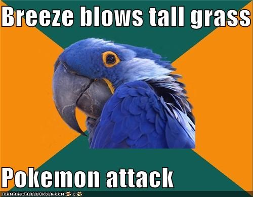animals,animemes,Battle,grass,Paranoid Parrot,Pokémemes,Pokémon,tall,video games