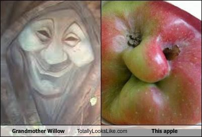 Grandmother Willow Totally Looks Like This Apple