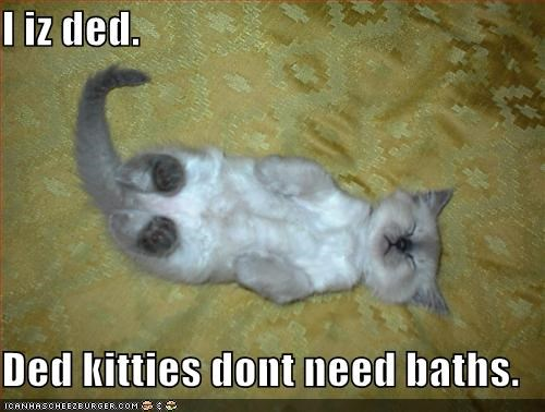 I iz ded.  Ded kitties dont need baths.