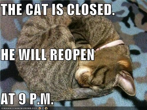 THE CAT IS CLOSED.