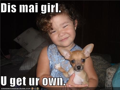 baby,chihuahua,get,girl,human,mine,mixed breed,own,puppy,toddler
