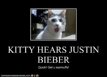 KITTY HEARS JUSTIN BIEBER