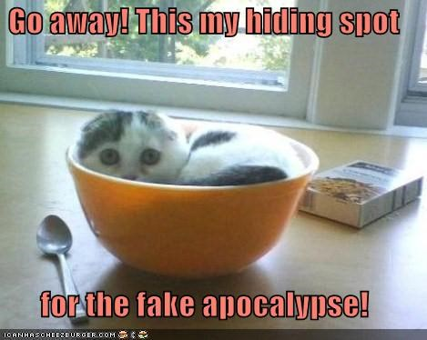 Go away! This my hiding spot  for the fake apocalypse!