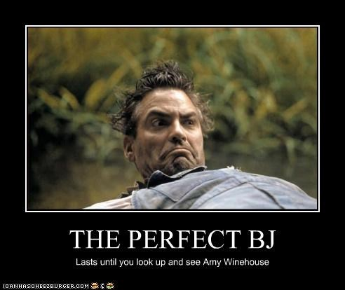 THE PERFECT BJ