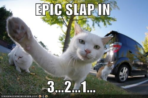 EPIC SLAP IN                  3...2...1...