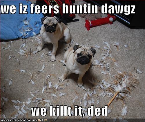 we iz feers huntin dawgz  we killt it, ded