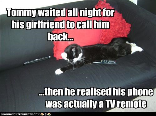 all night,caption,captioned,cat,confused,facepalm,girlfriend,mistake,phone,realization,realizing,remote,TV,wait,waited,waiting