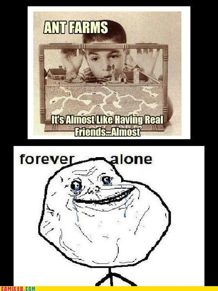 ant farm,forever alone,kids,the internets