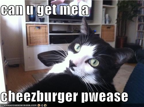 can u get me a  cheezburger pwease