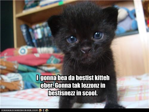 I  gonna bea da bestist kitteh eber. Gonna tak lezzonz in bestisnezz in scool.