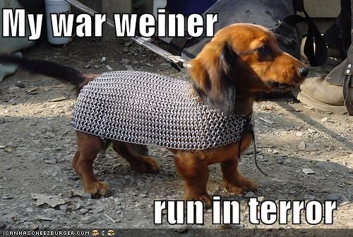 My war weiner  run in terror