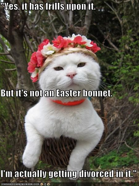 """Yes, it has frills upon it. But it's not an Easter bonnet. I'm actually getting divorced in it."""