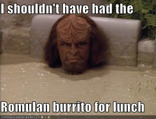 I shouldn't have had the  Romulan burrito for lunch