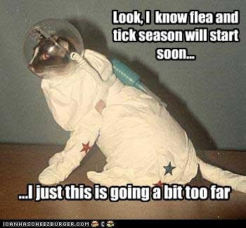 Look, I  know flea and tick season will start soon...