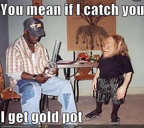 You mean if I catch you  I get gold pot