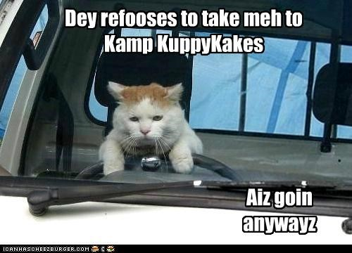 Dey refooses to take meh to Kamp KuppyKakes