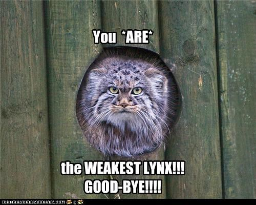 You  *ARE*       the WEAKEST LYNX!!! GOOD-BYE!!!!
