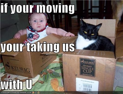 if your moving your taking us with U