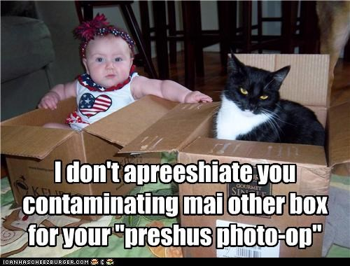 "I don't apreeshiate you contaminating mai other box for your ""preshus photo-op"""