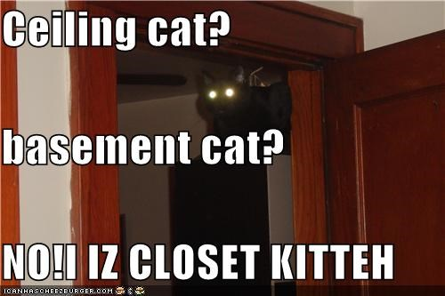 Ceiling cat? basement cat? NO!I IZ CLOSET KITTEH