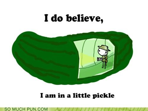 cucumber,dill,double meaning,exploring,literalism,pickle