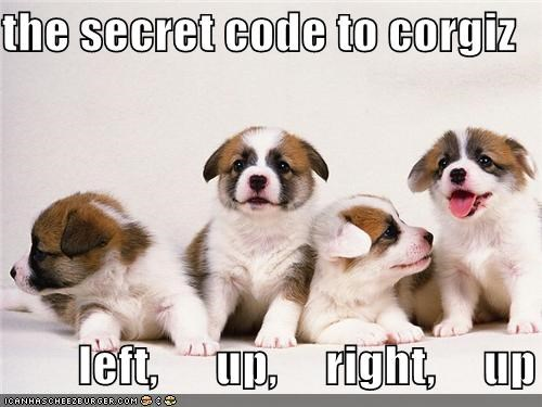 the secret code to corgiz          left,      up,     right,     up