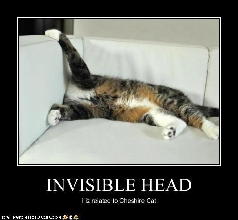 INVISIBLE HEAD