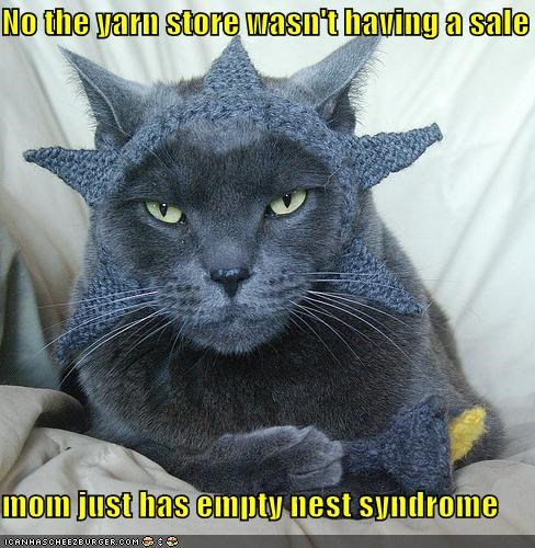 No the yarn store wasn't having a sale  mom just has empty nest syndrome