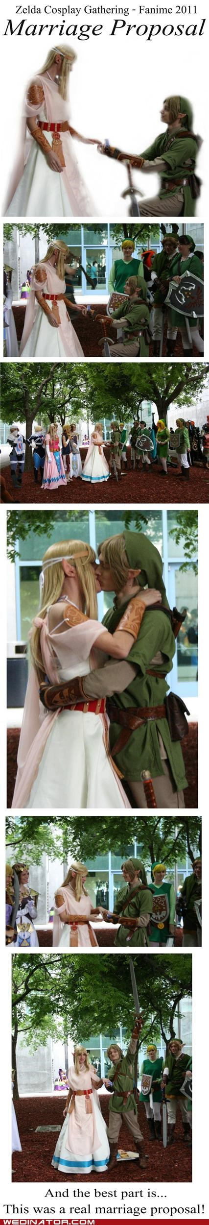 anime,funny wedding videos,geeks,proposal,the legend of zelda,zelda