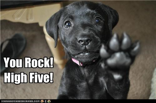 You rock! High five!