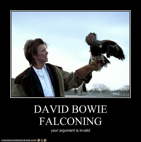 DAVID BOWIE FALCONING