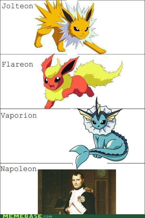 eevee,flareon,i choose you,napoleon,Pokémemes,Pokémon