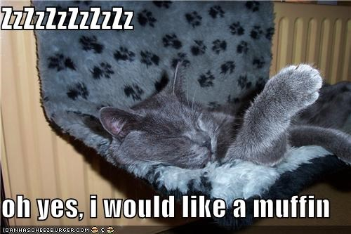 ZzZzZzZzZzZz  oh yes, i would like a muffin