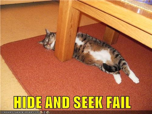 HIDE AND SEEK FAIL
